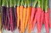 Thumbnail of Why Do You Have To Include Carrots In Your Diet