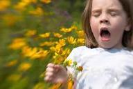 treat fall allergies