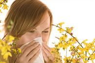 allergy treatments for adults