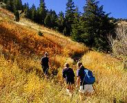 Safety Tips when Hiking