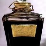Top Estee Lauder Perfumes